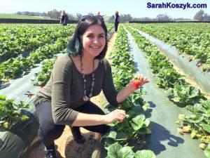 9_Pick_Strawberries